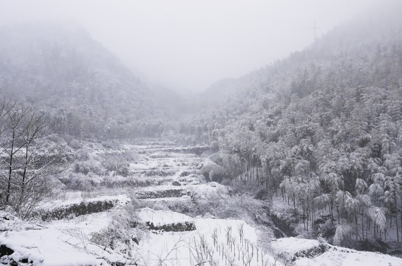 宁波余姚四明山区春雪美景-图片新闻-杭州写字楼网