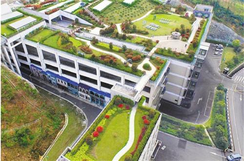 杭州屋顶绿化风景入画来