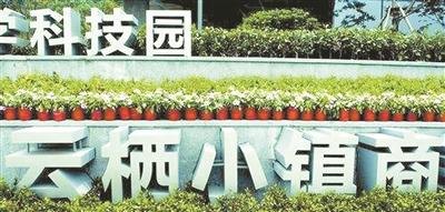 杭州西湖区打造城市大脑先行区 以云栖小镇数字化建设为载体